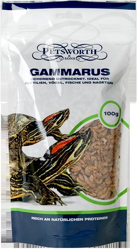 gammarus-1